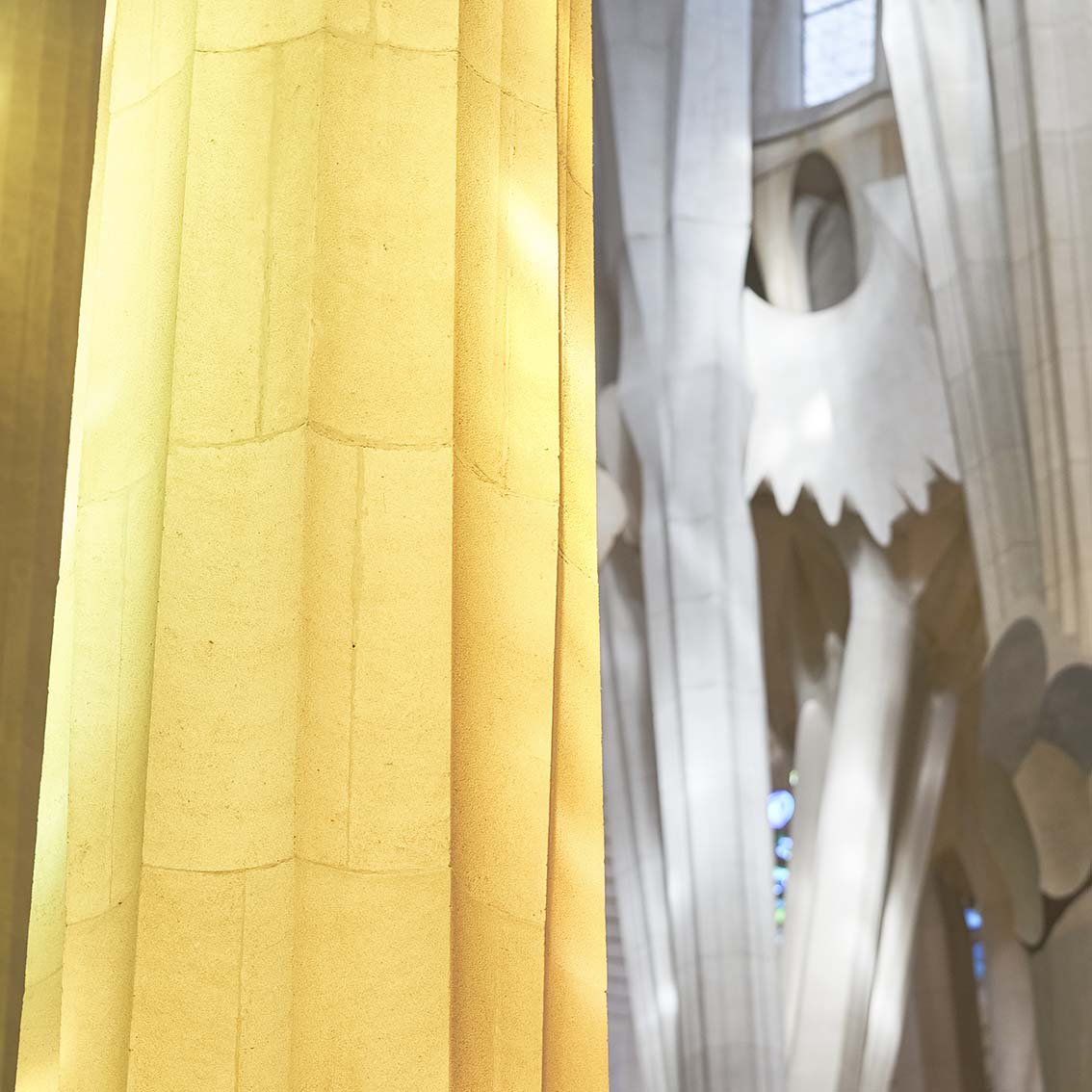 Pour-Gaudi-La-Sainte-Famille-5019-1x1