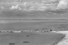 Jai-voulu-voir-la-mer-3801a